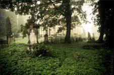 Tajemnicze wydarzenia na starym cmentarzu